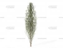 MAC E3D v2.2.2三维模型插件完美**版VideoCopilot Element 3D v2.2.2 build 2147